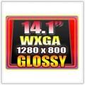 Màn hình (LCD) 14.1 inch wide gương 30 chân SWGA+