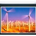 Màn chiếu điện treo tường Electric dalite 144x144
