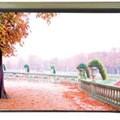Màn Điện Remote Screen 70x70