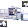 Máy làm hộp cơm nhựa FJL-600/1200 & Video