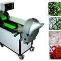 Máy cắt rau đa công năng EC-301B