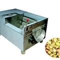 Máy rửa và bóc vỏ gừng FX-60