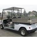 Xe điện Golfcar EZGO 2 chỗ ngồi+1carry box