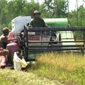 Máy gặt  ISEKI UMC - 2009