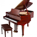 Đàn Piano Brandnew Essex EGP-173C