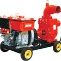 Máy bơm nước DTS5-RV125-2N