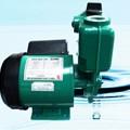 Bơm nước không tự động Wilo PW-126