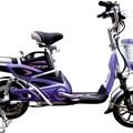 Xe đạp điện công chúa vành đúc DL-03