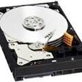 Server Hard Drive WD1003FBYX