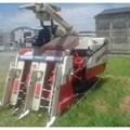 Máy gặt lúa YANMAR CA475G