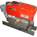 Động cơ diesel DS180