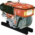 Động cơ diesel Vikyno RV80