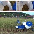 Máy gặt đập liên hợp mini KP4LZ-0.3