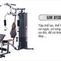 Giàn tập đa năng GM 8130
