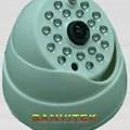 Camera sanvitek S-162A