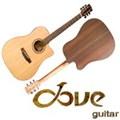 Dove Acousic Guitar DD-28CE