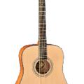 Adonis Acoustic Guitar AGW4116