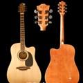 Beling Acoustic Guitar BF-300 CDBS