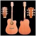 Soul Acousic Guitar SLC-010EQ