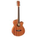 Harper Acoustic Guitar HGW-Q5U