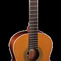 Classic Guitar Almansa 402
