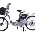 Xe đạp điện Nishiki 22