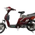 Xe đạp điện SN18