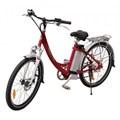 Xe đạp điện Chinsu TDF105Z 250w