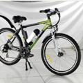 Xe đạp điện Chinsu TDF119Z 250W