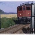 Cổng kiểm soát bức xạ dành cho đường sắt Polimaster PM5000A-14