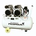 Máy nén khí giảm âm PEGASUS TM-OF750-T
