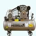 Máy nén khí PEGASUS TM-V-0.17/8-70L