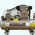 Máy nén khí PEGASUS TM-V-0.17/8-100L