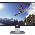Dell S2240L - 21.5 inch LED