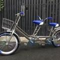 Xe đạp đôi trẻ em dưới 15 tuổi