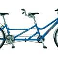 Xe đạp đôi cho người lớn