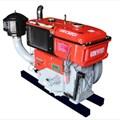 Động cơ diesel RV320-NA