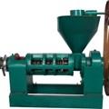 Máy ép dầu YZYX10-9