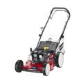 Máy cắt cỏ Toro Steel Deck Recycler 20943
