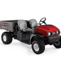 Máy cắt cỏ Toro Workman® MDX-D (07359TC)