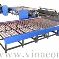 Double Edger and Polisher Line