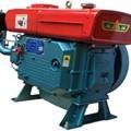 Động cơ diesel S1100A (D15 nước)