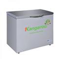 Tủ đông kháng khuẩn Kangaroo KG428VC1
