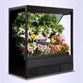 Tủ trưng bày và bảo quan hoa quả siêu thị OKASU OKS-SG18YH
