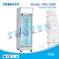 Tủ mát bảo quản thực phẩm Frozen  FRG-600F