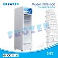 Tủ mát siêu thị  Frozen FRG-600