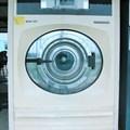 Máy giặt vắt Yamamoto - WDN 30