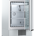 Tủ vi khí hậu có đèn (256L) loại ICH260ecoL, Hãng Memmert/Đức