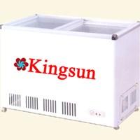 Tủ đông Kingsun SCD-180