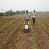 Máy tra hạt, xới cỏ và bón phân Model 3WG-5